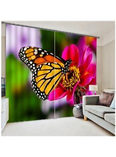 3D Beautiful Butterfly Energy Saving Curtain