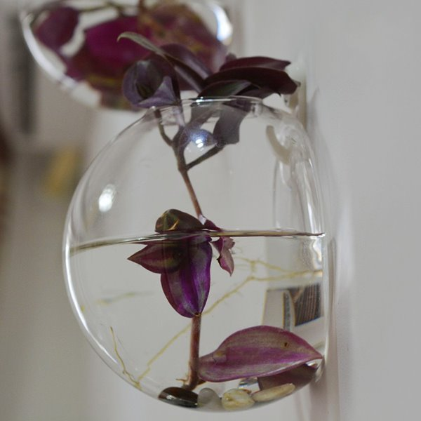 Creative Glass 1-Piece Wall Flower Vase