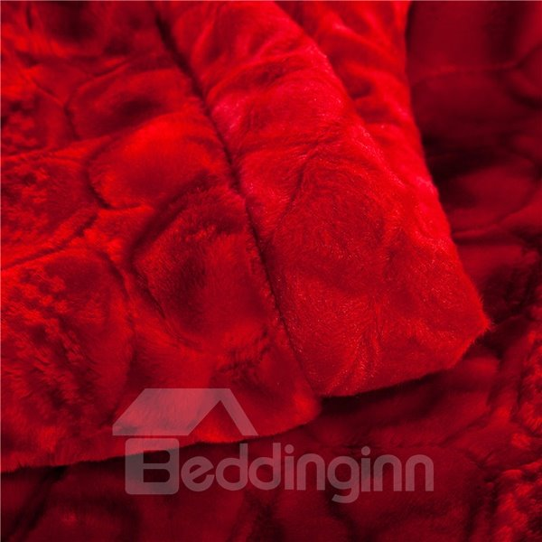 Beaming Solid-Colored Style Full Size red Raschel Blanket