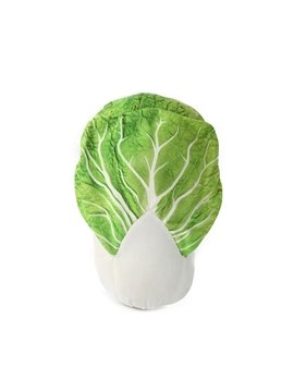 Emulational Vivid Chinese Cabbage Shape Plush Throw Pillow