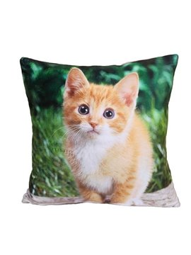 Lovely Small Cat Print Plush Throw Pillow