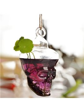 Creative Skull Design Glass Flower Water Plant Hanging Wall Vase