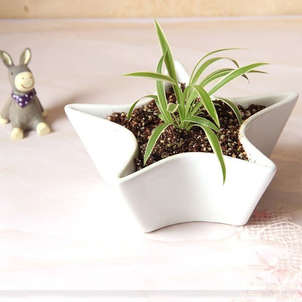Creative Star Design Ceramic Table Desk Flower Pot