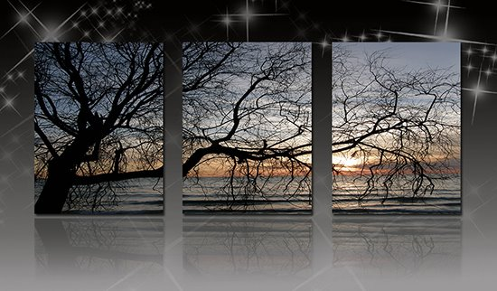 Unique Bare Tree Branches in Sunset 3-Panel Canvas Wall Art Prints