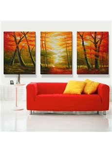 Unique Trees in Dim Forest 3-Panel Canvas Wall Art Prints