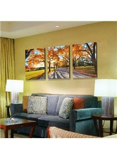 Wonderful Tree-Lined Lane 3-Panel Canvas Wall Art Prints