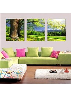 Wonderful Tree in the Green Field 3-Panel Canvas Wall Art Prints