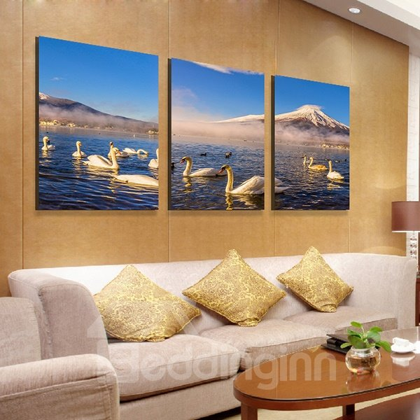 Wonderful Swans Swimming in the Lake 3-Panel Canvas Wall Art Prints