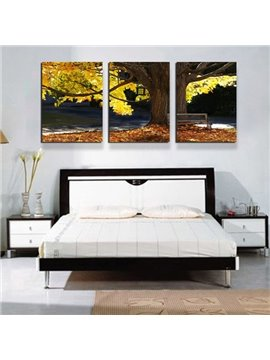 Giant Sycamore Tree 3-Panel Canvas Wall Art Prints
