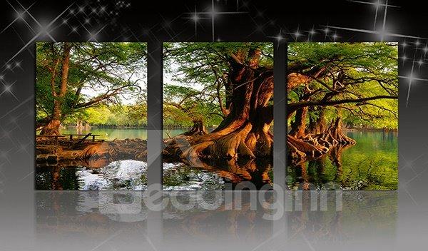 Amazing Banyan Tree in Water 3-Panel Canvas Wall Art Prints