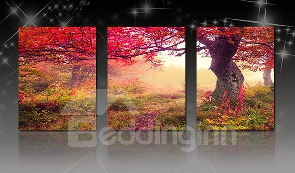 Wonderful Large Tree in Forest 3-Panel Canvas Wall Art Prints