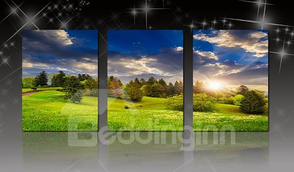 Picturesque Green Field in Blue Sky 3-Panel Canvas Wall Art Prints