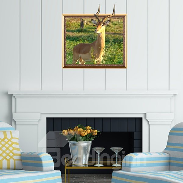 Fantastic Wild Gazelle Framed Removable 3D Wall Sticker