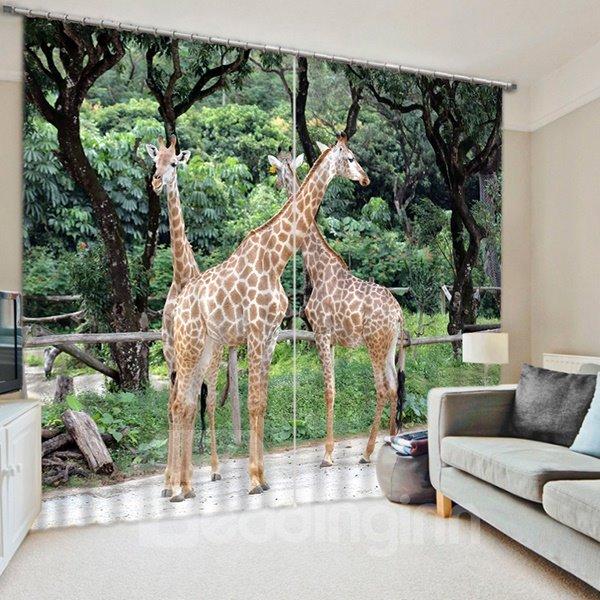 Three Giraffes Playing Print 3D Blackout Curtain