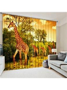 A Group of Cute Giraffes Print 3D Blackout Curtain