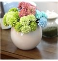 White Simple Round Flower Vases for Home Decoration