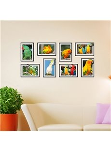 Cute Parrots Photo Frame Wall Stickers