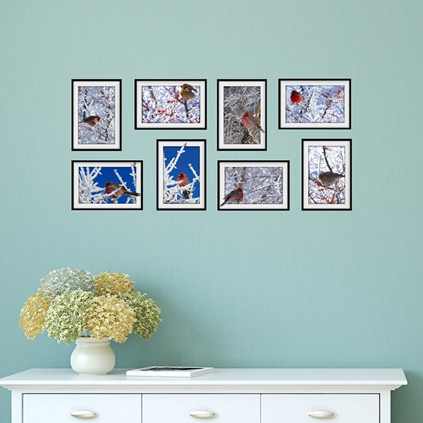 Natural Scenery Plum Blossoms and Birds Photo Frame Wall Sticker