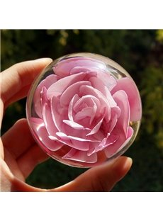 Creative Valentines Day Gift Beautiful Dried Flower Hand-made Resin Ball