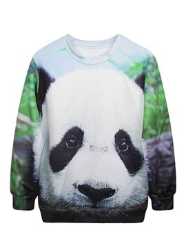 Cute Long Sleeve Panda Pattern 3D Painted Hoodie