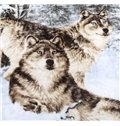 Vivid Wolf in the Snow Print Raschel Blanket
