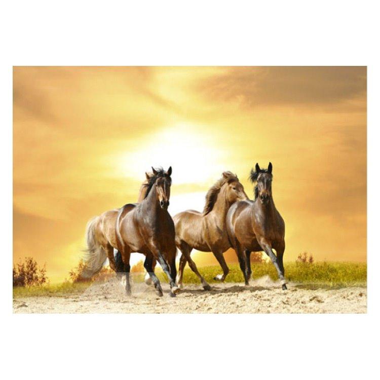 Vivid Horses Running in the Desert at Sunset Non-slip Decorative Doormat