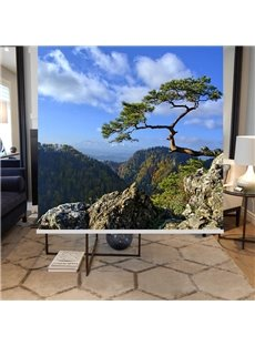 Pine in the Top of Mountain Printing Blackout 3D Roller Shades