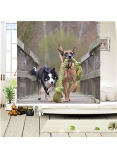 Two Cute Dog Running Printing Blackout 3D Roller Shades