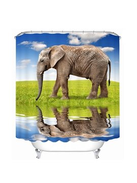 Vivid Elegant Printing Bathroom Decor 3D Shower Curtain