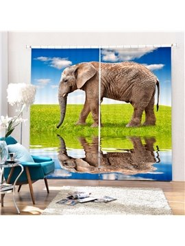 Vivid Wild  Elegant Printing 3D Curtain