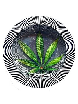 Green Leave and Zebra-stripe 3D Pattern Ashtray