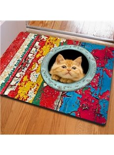 Classic Rectangle Cute Cat Pattern Outdoor Indoor Non Slip Doormat