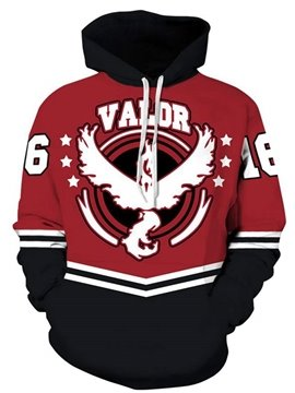 Popular Long Sleeve Eagle Pattern Pullover 3D Painted Hoodie