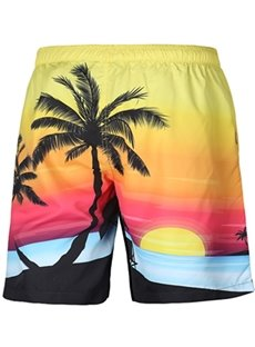 Pretty Coconuts Tree Pattern Colorful 3D Beach Shorts