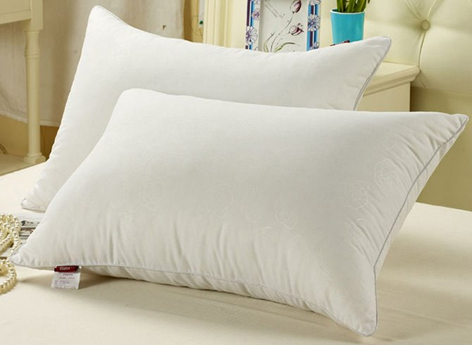 INOpets.com Anything for Pets Parents & Their Pets Soft and Light Exquisite White 100% Fibre Bed Pillow